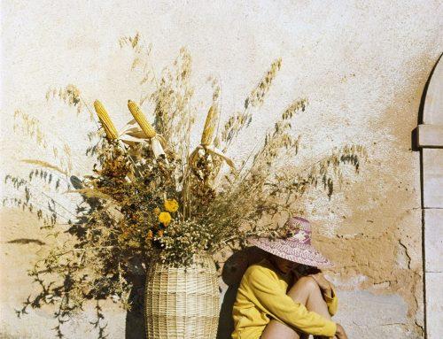 Słoneczne wyrażenia i idiomy na lato oraz parę wakacyjnych francuskich inspiracji