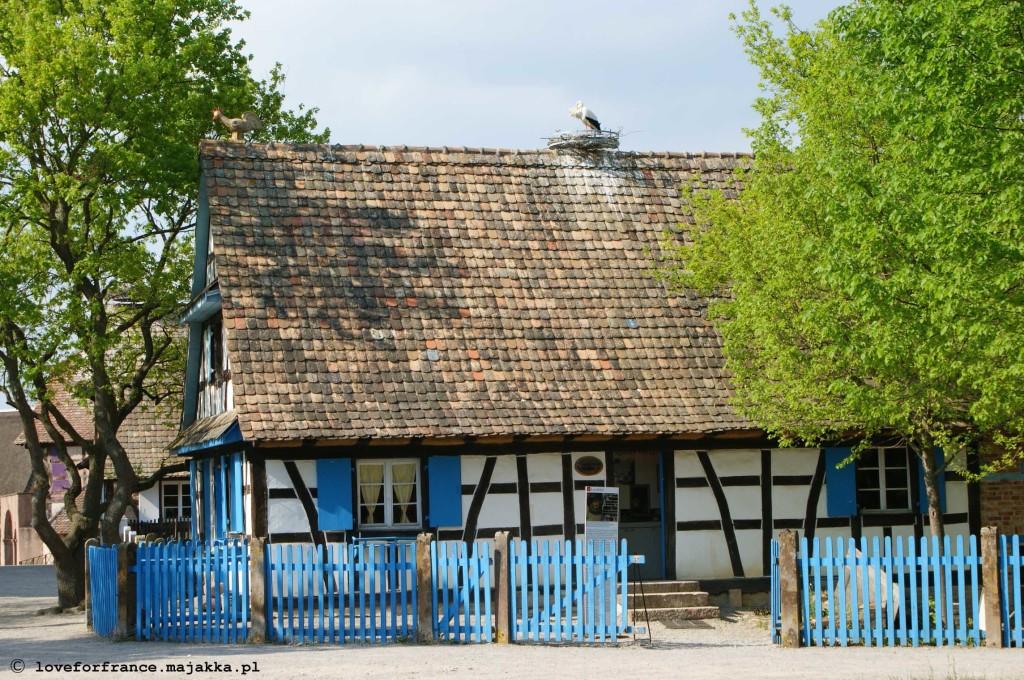 Ecomusée d'Alsace Alzacja skansen