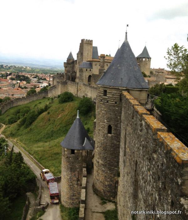 Carcassonnea