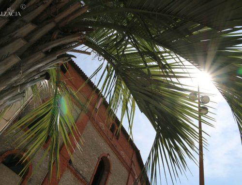 Wiatr, cykady i nasze wspomnienia z wakacji w Oksytanii