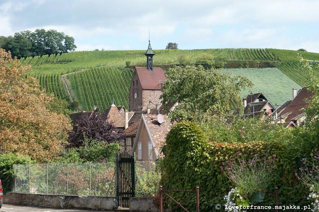 Alsace x10